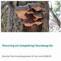 Från framsida av krondroppsrapporten 2018-19 Fotot av Sofie Hellsten