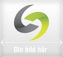 gratis hemsida av smelink.se