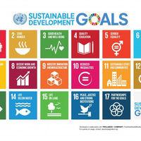 FNs agenda 2030(1)_800