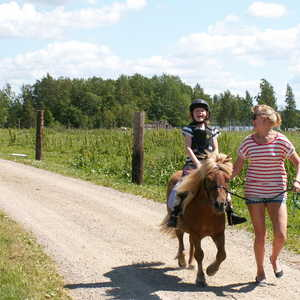 Ponnyridning, mycket popul�rt! Pony rides, very popular!
