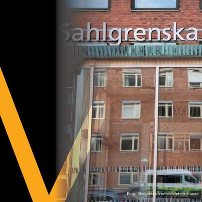 voltair_bild_shalgrenska