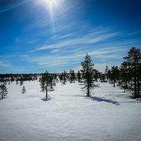 Mora Norra Vildmark