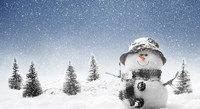 Winter-Snowman