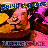 Brink_Stevve_omslag_x2