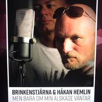 Utkast - Omslag - Hemlin - Brink  Alphaman