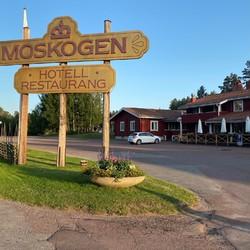 Skylt Moskogen